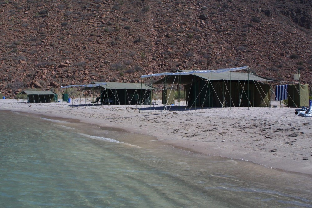 Baja Camp, isla Espiritu Santo, the beach