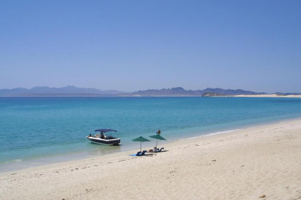 Baja Camp, isla Espiritu Santo, the beach