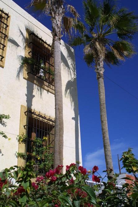 Casa Natalia, San Jose del Cabo
