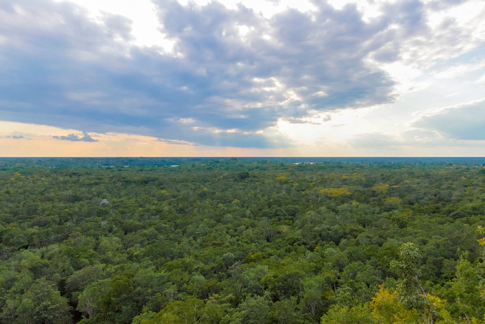 coba ruins, view from the top of nohoch mul