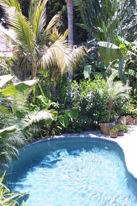Todos Santos Inn, the pool