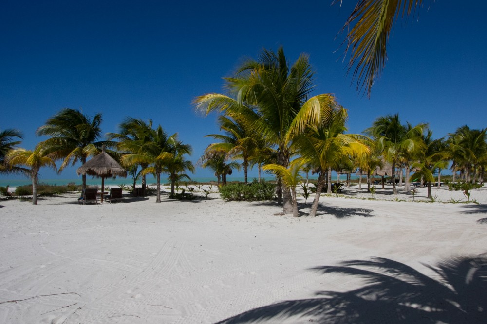Villas Delfines, Holbox island, the beach