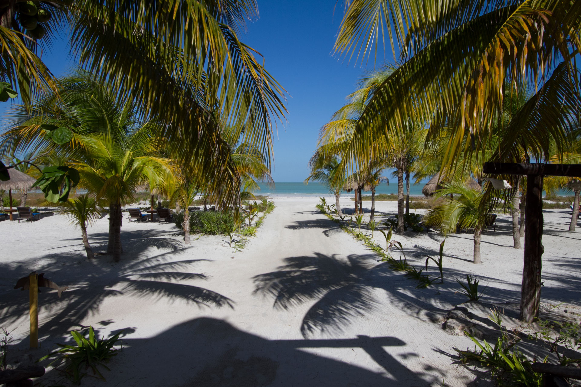 Best Hotel For Families Holbox Island